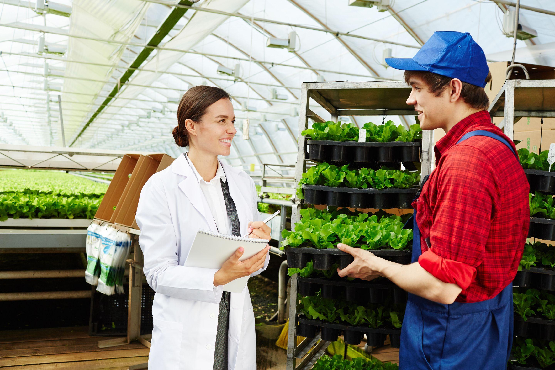 best-agricultural-consultants-faisalabad-punjab-pakistan