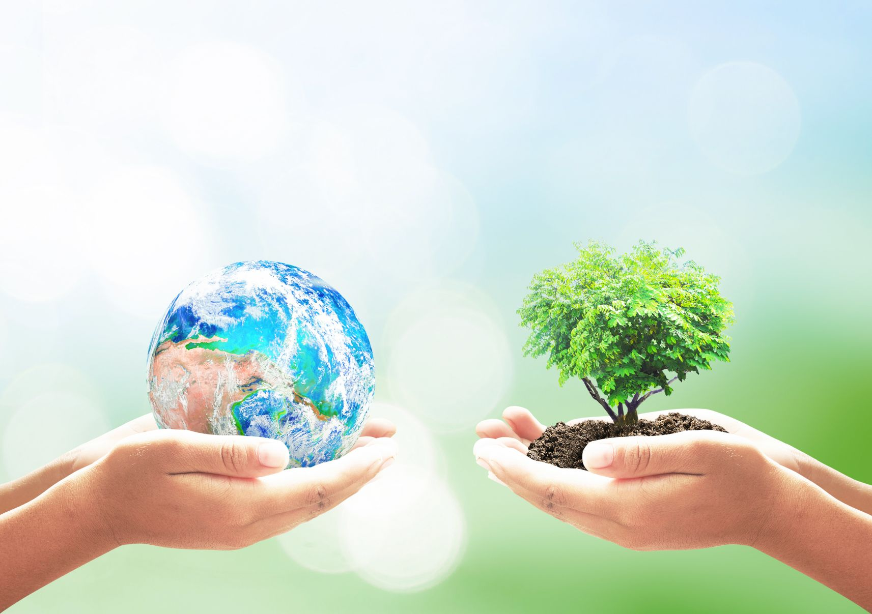 best-environmental-ecological-services-toms-river-nj-usa