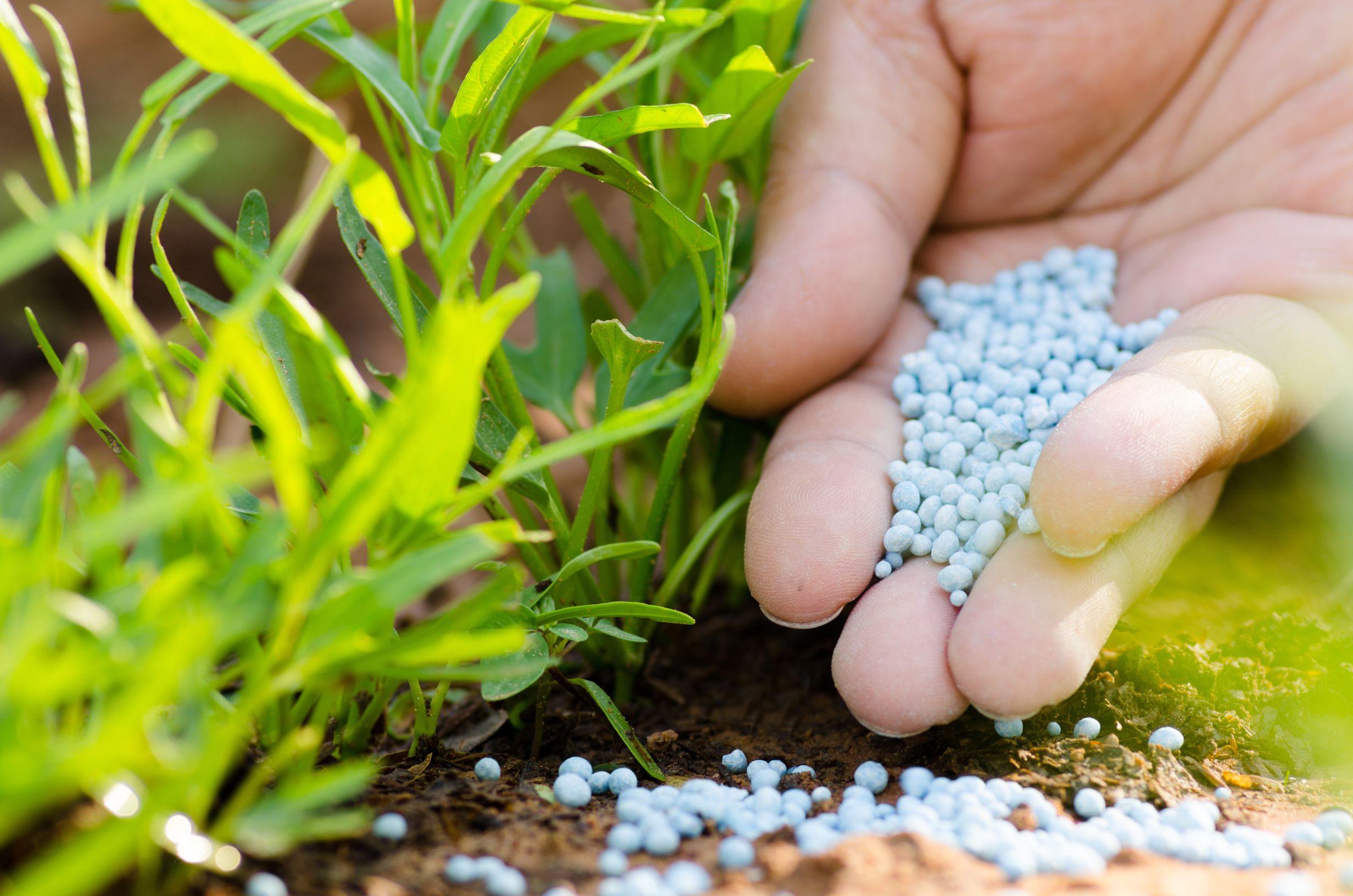 best-fertilizers-oklahoma-city-ok-usa