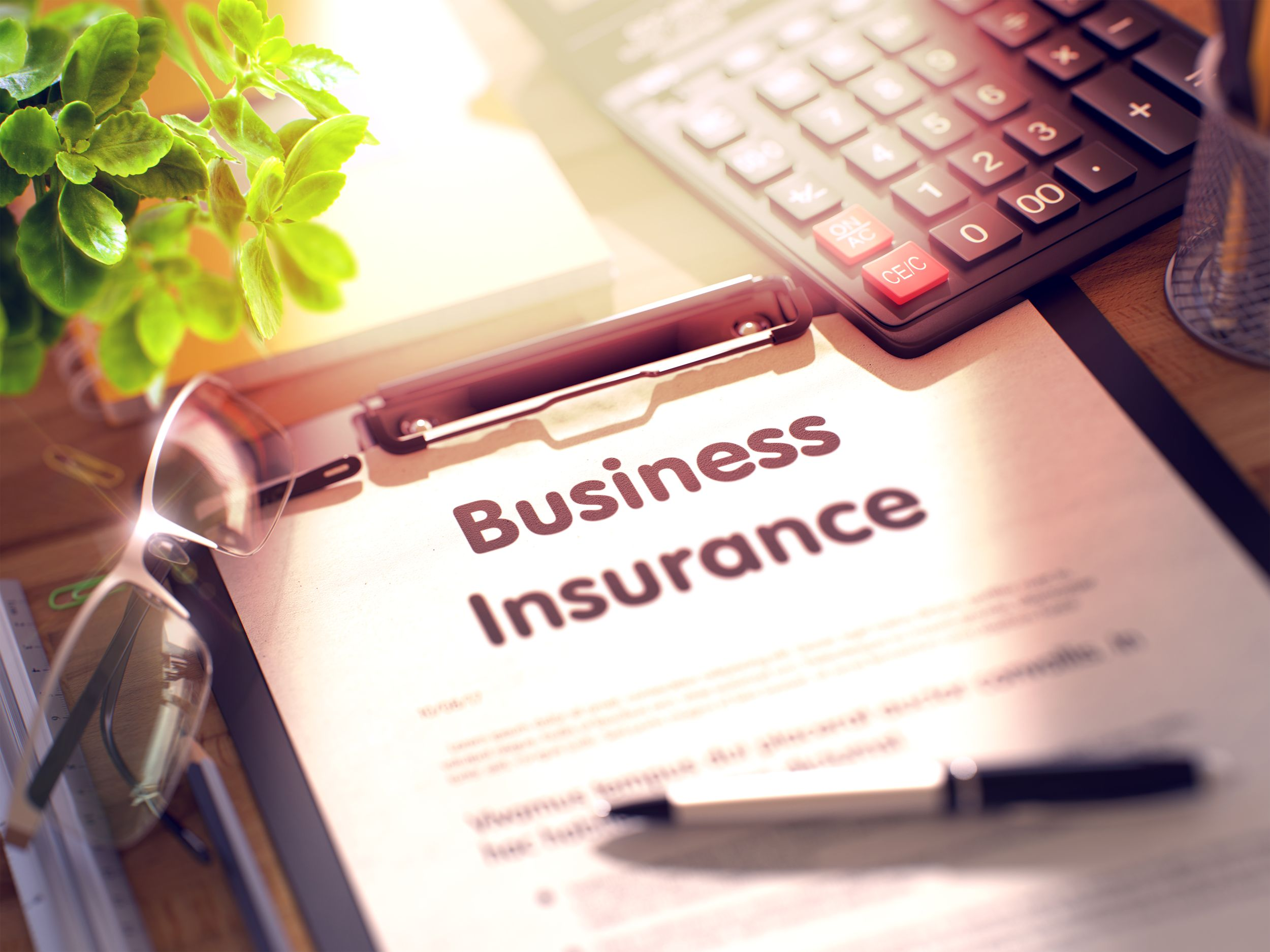 best-insurance-business-palm-beach-gardens-fl-usa